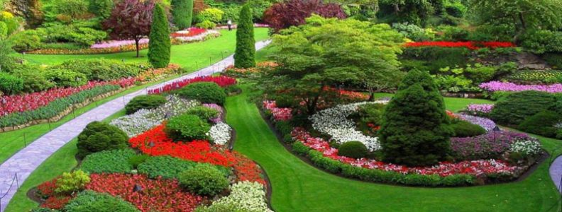 The Basic Principles Of Landscape Design Web Dizzy